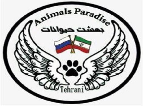 پانسيون بهشت حيوانات